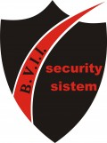 BVII SECURITY